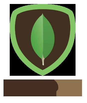 mongodb-1.png